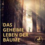 Das geheime Leben der Bäume, Constantin Film